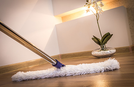 Floor mopping plus - how to clean various types of floor